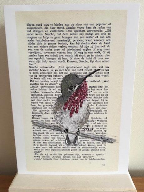 Wenskaart - Geboorte - kolibrie