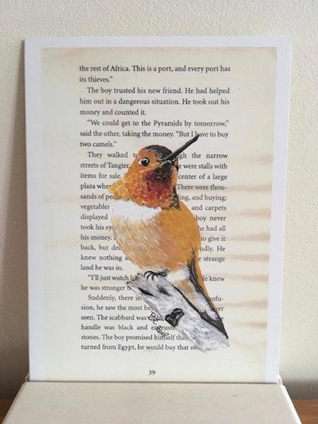 Wenskaart - Verjaardag - kolibri (oranje)