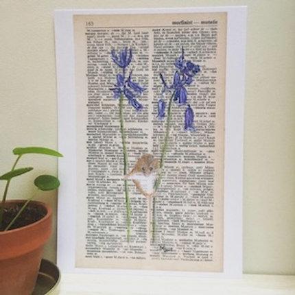 Dwergmuisje op blauwklokjes - kunstprint (A5)