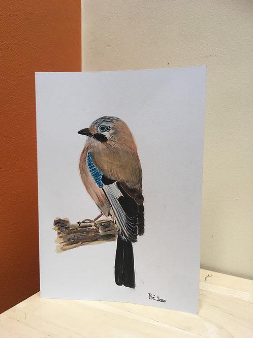 Handgeschilderde wenskaart Vlaamse gaai