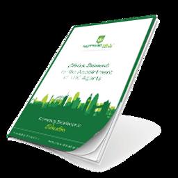 Mini MBA Agent Guide