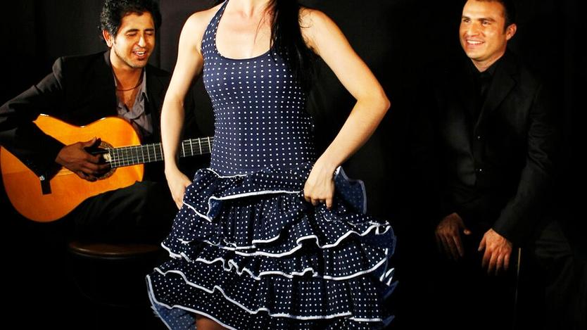 Espectáculos_de_Flamenco.png