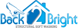 Back 2 Bright Logo