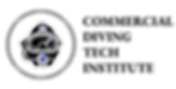 CDTI Final Logo 3.png