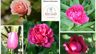 le jardin de Roland et Germaine