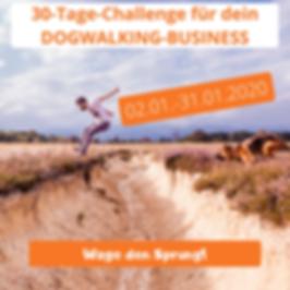 Die_30-Tage-Challenge_für_dein_Hundesitt