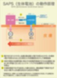 SAPS動作原理_縦.jpg