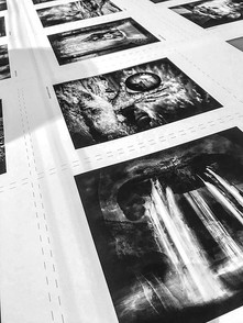 The print run.jpg