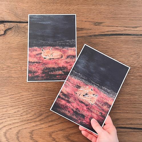 2 Illustrationen A5 (Reh und Fuchs schlafend)