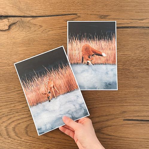 2 Illustrationen A5 (Reh und Fuchs am Wasser)