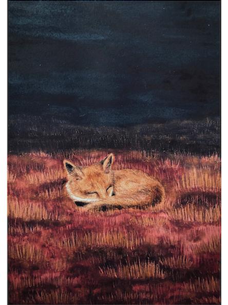 "Illustration ""Fuchs im Gras"" (A5)"