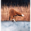 Thumbnail: 2 Illustrationen A5 (Reh und Fuchs am Wasser)