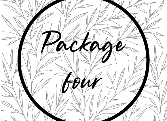 Package 4 | All the details