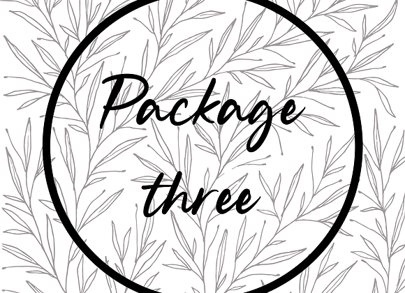 Package 3 | All about the day