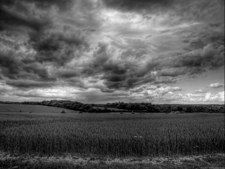 Storm clouds gathering over field