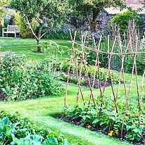 permaculture-potager-1024x576.jpg
