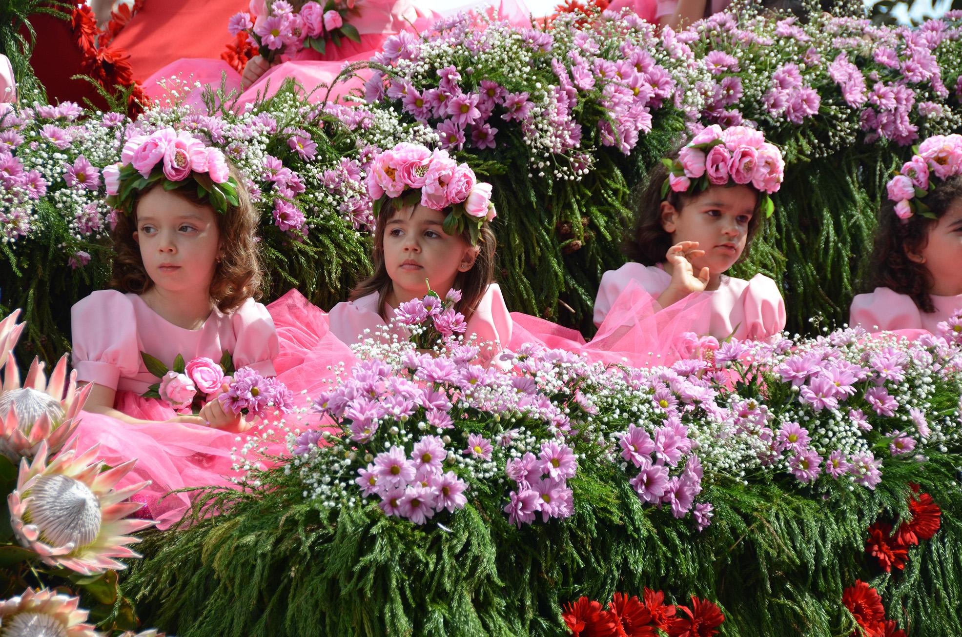 Madeira2_26.jpg