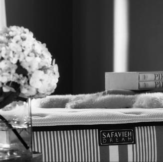 Art Director - Safavieh Lifestyle for Mattress Collection