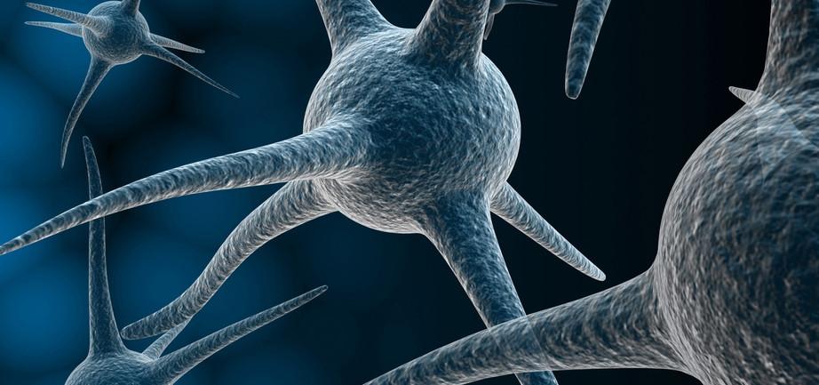 Brain-Plasticity-Inc.-investigates-e-CAeSAR-trial.jpg
