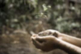 hands-1838659_1920.jpg