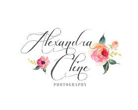 AlyseM-Logo-JPG.jpg