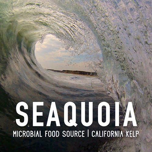 California Kelp Microbial Food Source