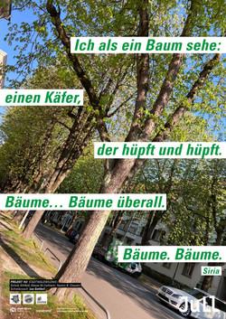Stadtwaldwildnis Ib