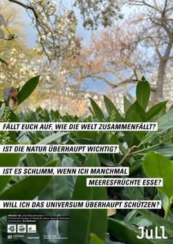 Stadtwaldwildnis IIb