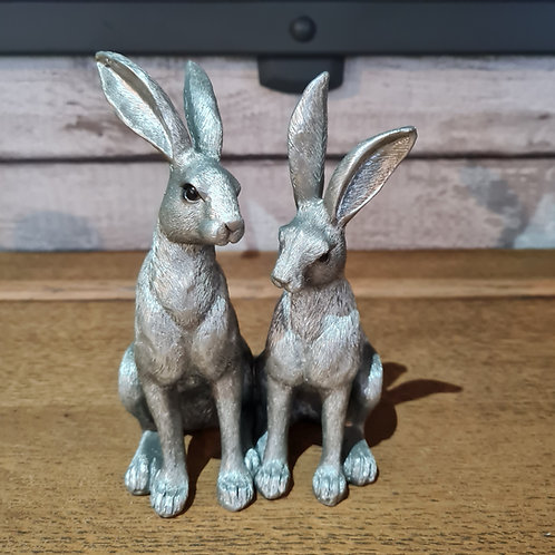 Silvered Hares