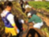 20191110kutamatsuri-farm1_edited.jpg