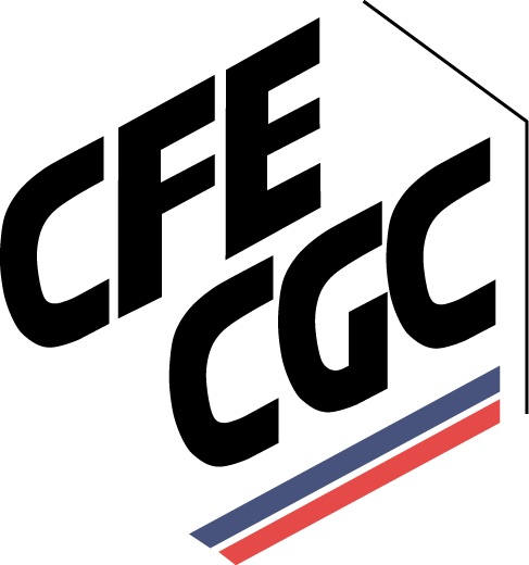 Logo_cfe-cgc.jpg