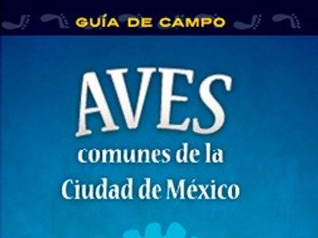 Guía de Campo: Aves comunes de la Ciudad México