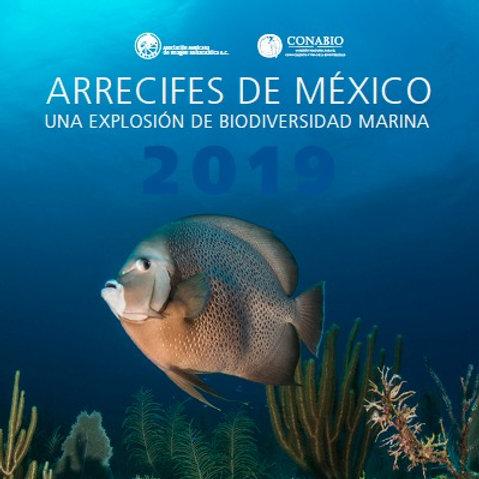 Calendario: Arrecifes de México: una explosión de biodiversidad marina