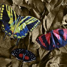 Mariposas de hojas secas <ejemplos> | Butterflies made of dry leafs <examples>