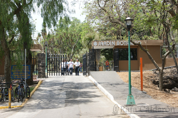 IHUITL+-+20120520+-+Jardin+Botánico+IBUN