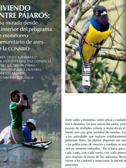 Viviendo entre Pájaros: una mirada desde el interior del programa de monitoreo comunitario de aves de la CONABIO