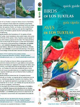 Guía rápida de las Aves de los Tuxtlas