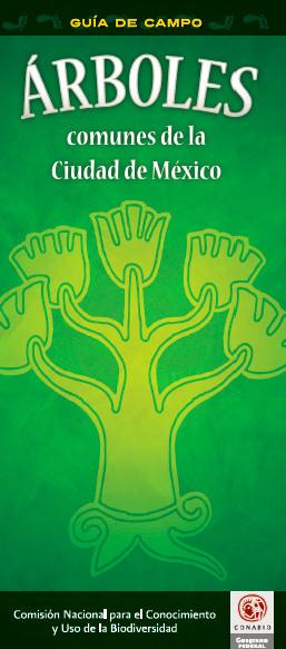 Guía de Campo: Árboles   Field Guide: Trees