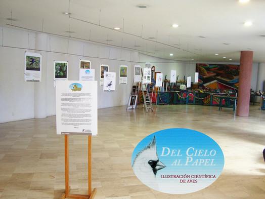 Exposición bajo techo: Parque Ecológico de Xochimilco