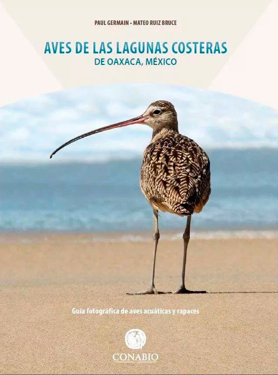 Guía de Campo: Aves | Field Guide: Birds