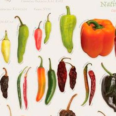 Cartel: Chiles de México