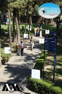 Exposición al aire libre: Universidad Autónoma Metropolitana - Xochimilco
