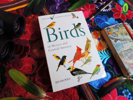 Guía de Campo: Aves   Field Guide: Birds