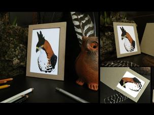 Portaretratos / impresión | Frame / print