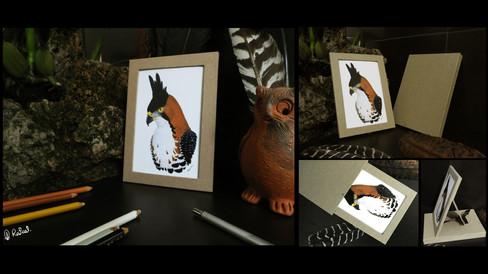 Impresión con portaretratos y caja   Framed print with box