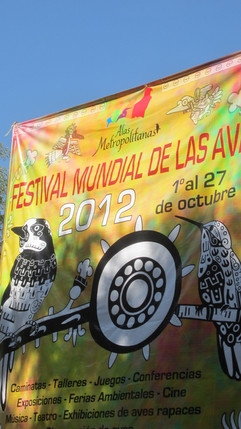 2012 - Festival Mundial de las Aves: Alas Metropolitanas