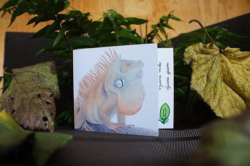 Tarjeta Plegable: Iguana Verde