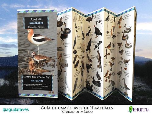 Guía de Campo: Aves de Humedales | Ciudad de México