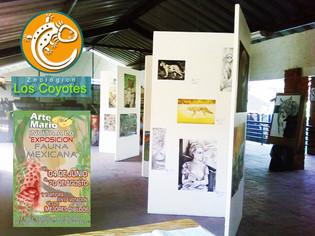 Exposición en el Zoológico de los Coyotes