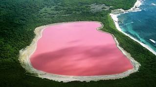 Pink Lake Hillier in Australia